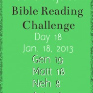 Let It Go Book Giveaway & Bible Reading Challenge Check-in