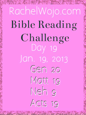Day 19 Bible Reading Challenge