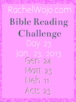 bible reading challenge day 23