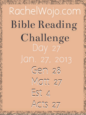 Day 27 Bible Reading Challenge