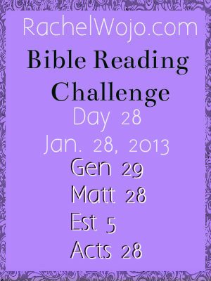 bible reading challenge day 28