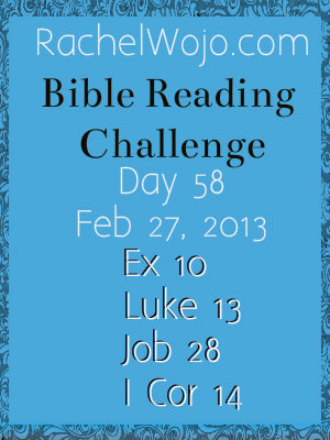 bible reading challenge day 58