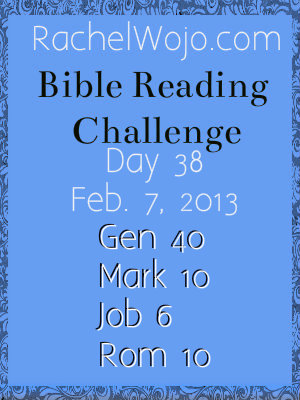 bible reading challenge day 38