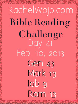 Day 41 Bible Reading Challenge