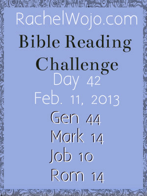 bible reading challenge day 42