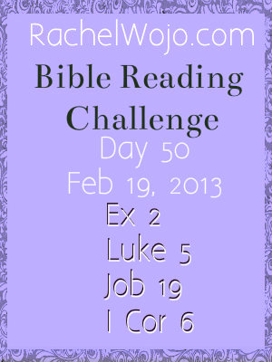 bible reading challenge day 50