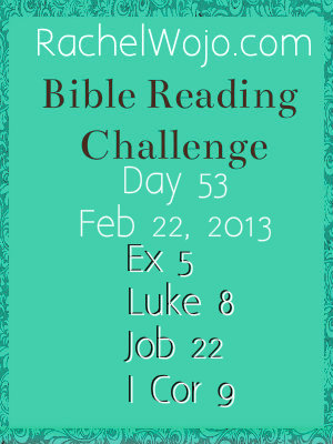 bible reading challenge day 53