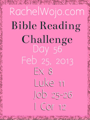 bible reading challenge day 56