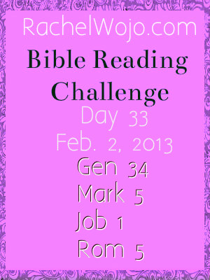 day 33 bible reading challenge