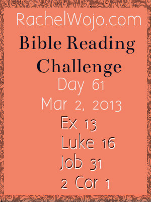 bible reading challenge day 61
