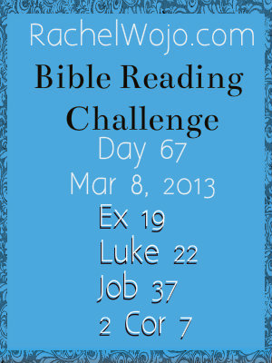 day 67 Bible Reading Challenge