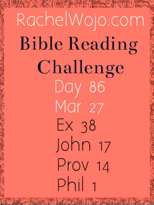 bible reading challenge day 86