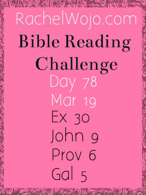 bible reading challenge day 78