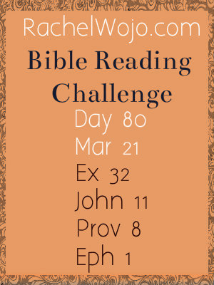 bible reading challenge day 80