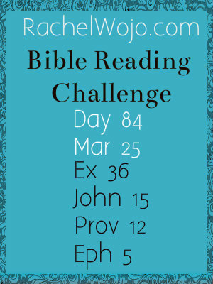 bible reading day 84