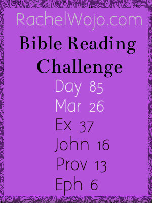 bible reading challenge day 85