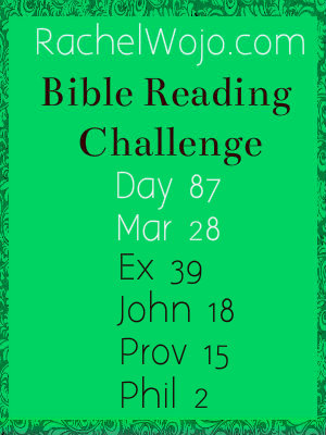 bible reading challenge day 87