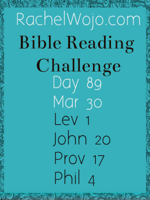 bible reading challenge day 89