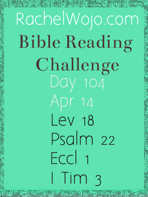 bible reading challenge day 104
