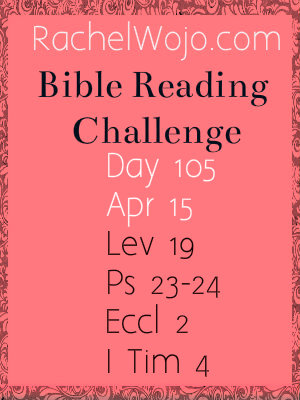 bible reading challenge day 105