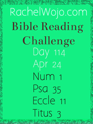 bible reading challenge day 114