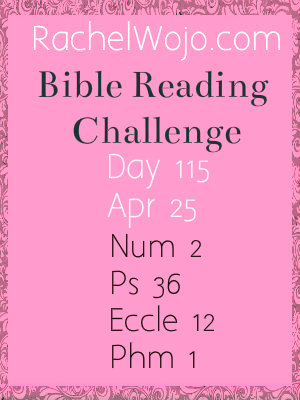 bible reading challenge day 115