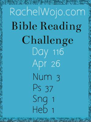 bible reading challenge day 116