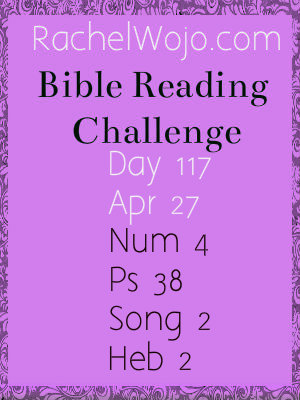 Bible Challenge Reading Day 117
