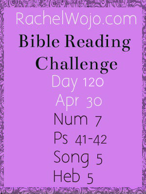 bible reading challenge day 120