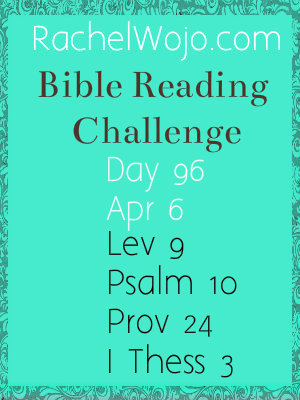 bible reading challenge day 96