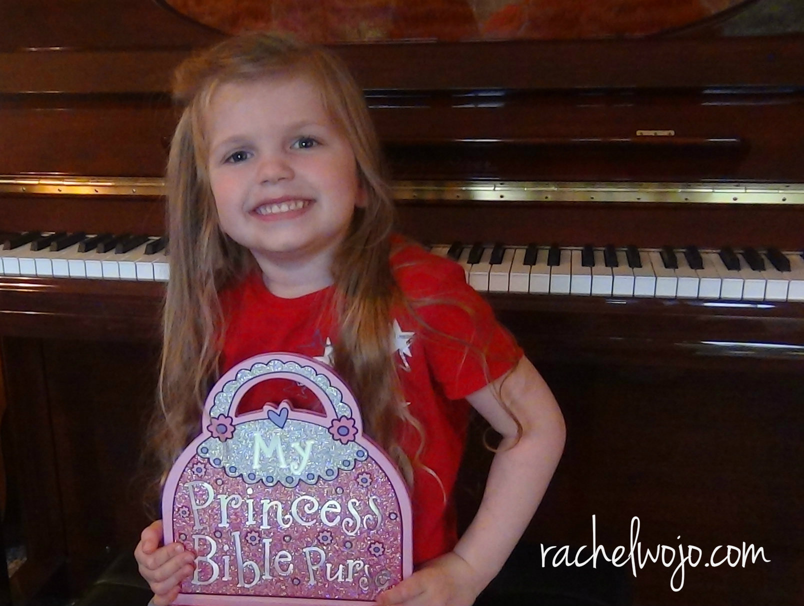 princess bible purse