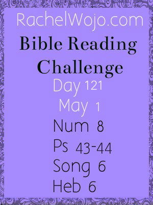 bible reading challenge day 121