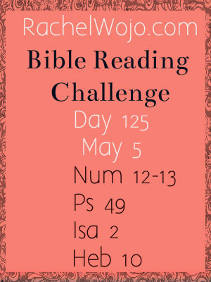 bible reading challenge day 125