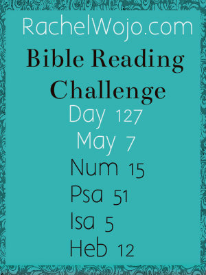 bible reading challenge day 127