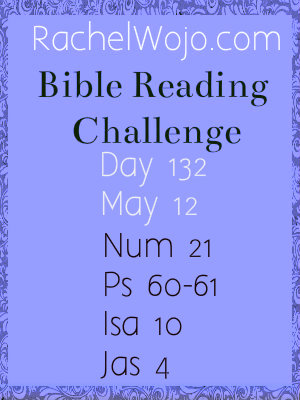 bible reading challenge day 132