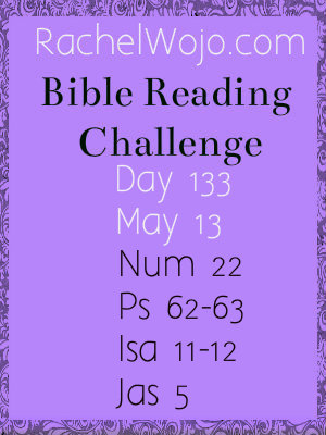 bible reading challenge day 133