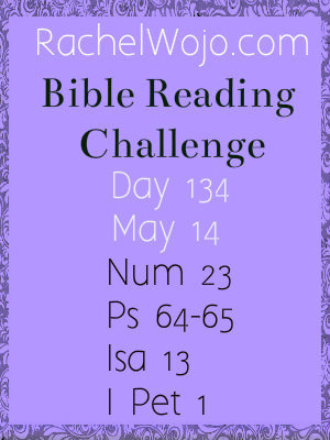 bibe reading challenge day 134