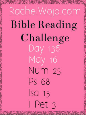 bible reading challenge day 136