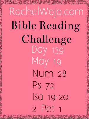 Bible Reading Challenge Day 139