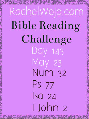 bible reading challenge day 143