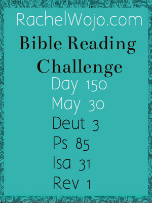 bible reading challenge day 150