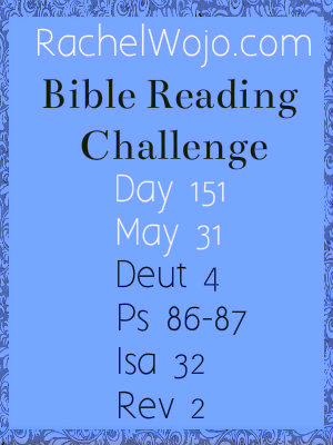 bible reading challenge day 151