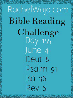 bible reading challenge day 155