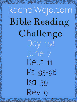 bible reading challenge day 158