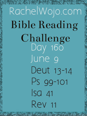 bible reading challenge day 160
