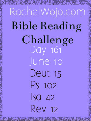 bible reading challenge day 161