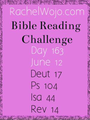 biblereadingchallenge_day163