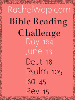 bible reading challenge day 164
