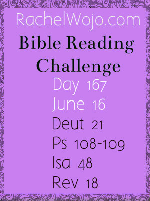 bible reading challenge day 167