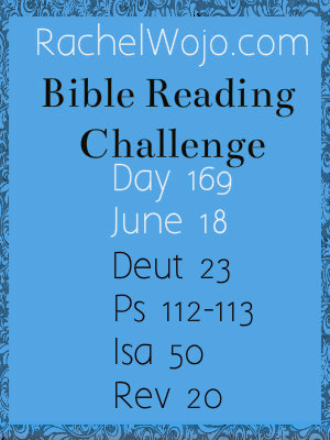 day 169 bible reading challenge